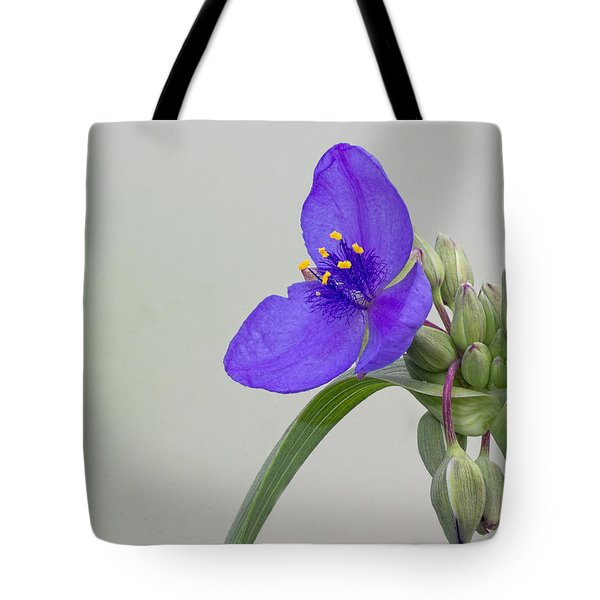 Ohio Spiderwort Tote Bag