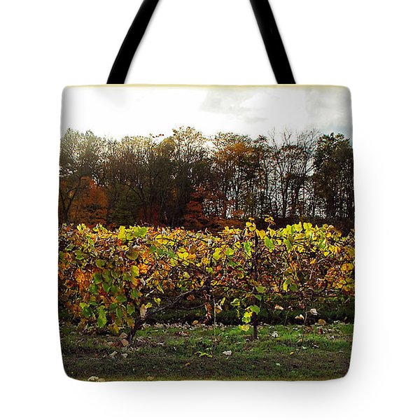 Tote Bag featuring the photograph Ohio Winery In Autumn by Joan  Minchak