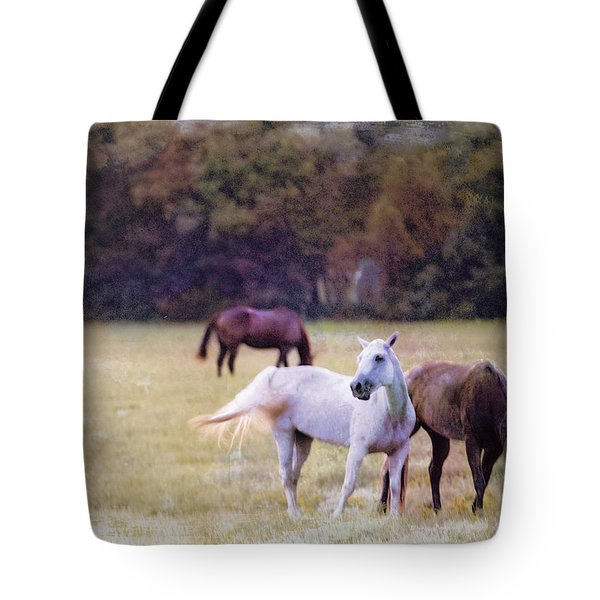 Ok Horse Ranch_1c Tote Bag