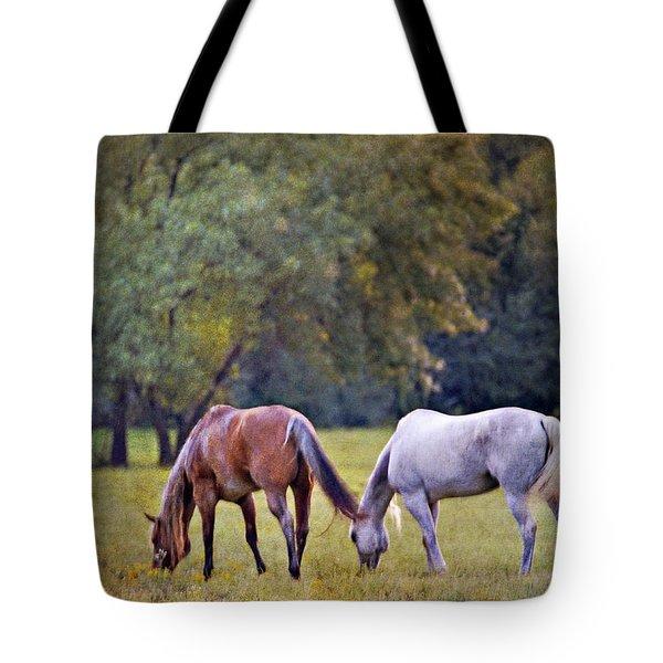 Ok Horse Ranch_2a Tote Bag