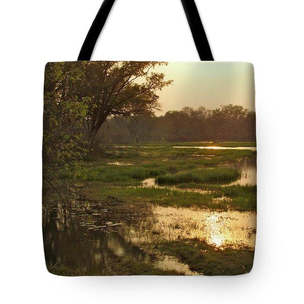 Okavango Delta Gold Tote Bag