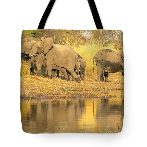 Okavango Scramble Tote Bag