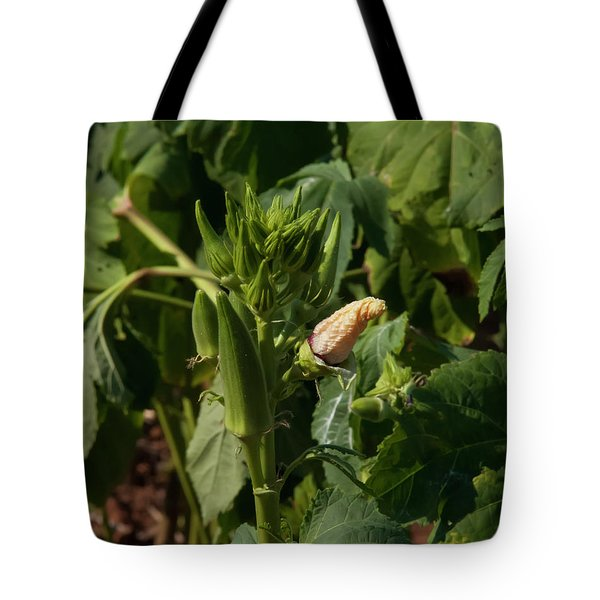 Tote Bag featuring the photograph Okra On The Stalk by Chris Flees