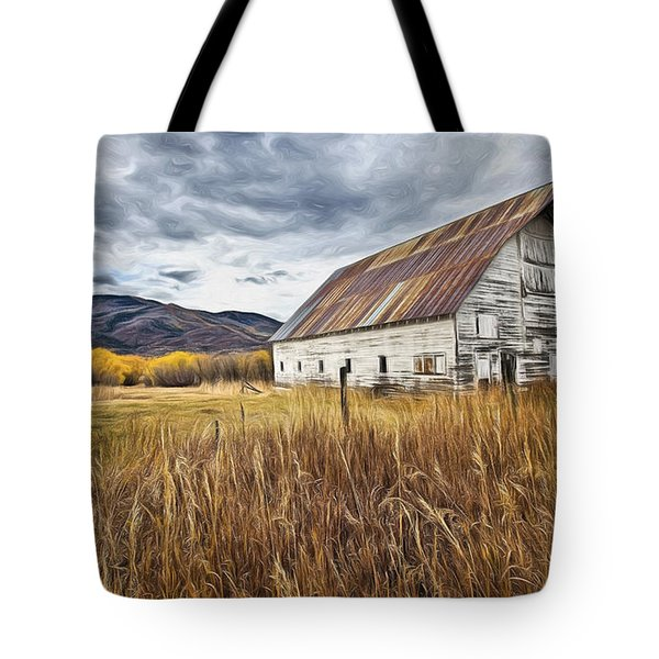 Old Barn In Steamboat,co Tote Bag by James Steele