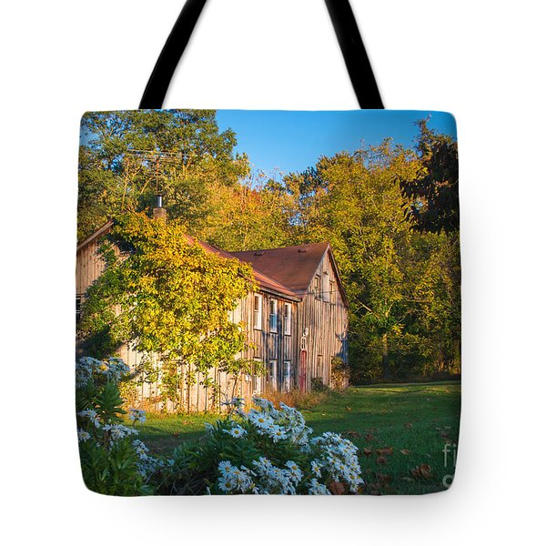 Old Beauty Tote Bag by Rima Biswas