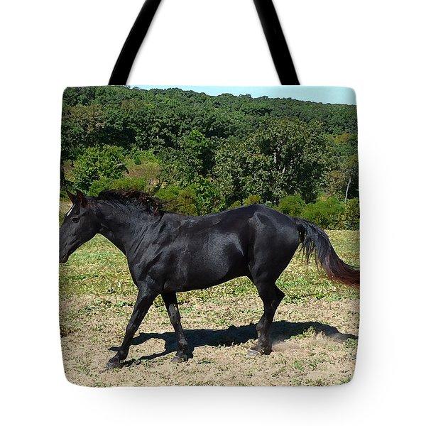Old Black Horse Running Tote Bag