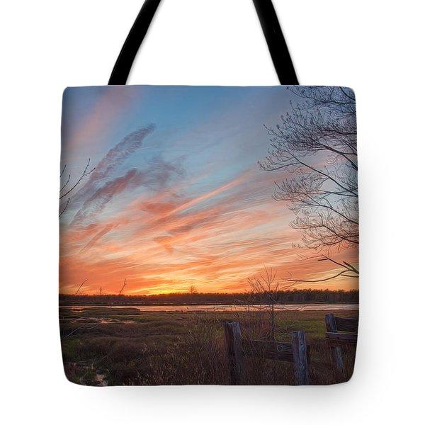 Old Bog Sunset Tote Bag