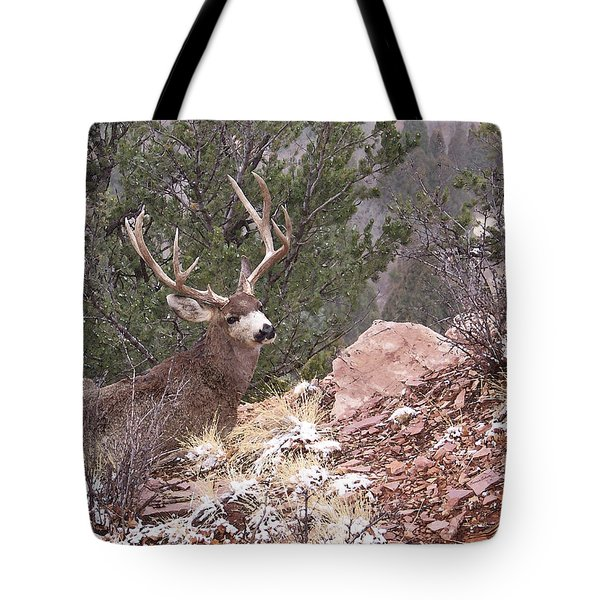 Old Buck Tote Bag