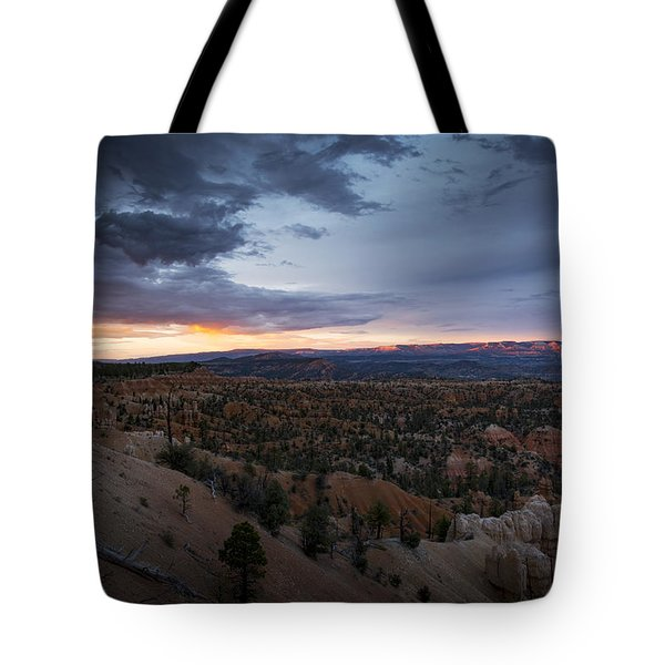 Old But Beautiful Tote Bag