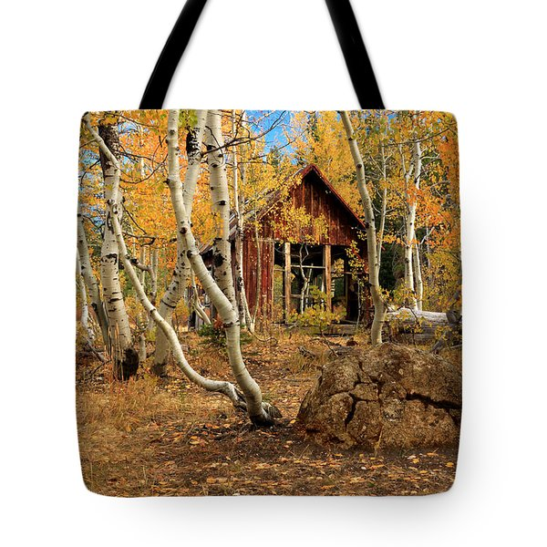 Old Cabin In The Aspens Tote Bag by James Eddy