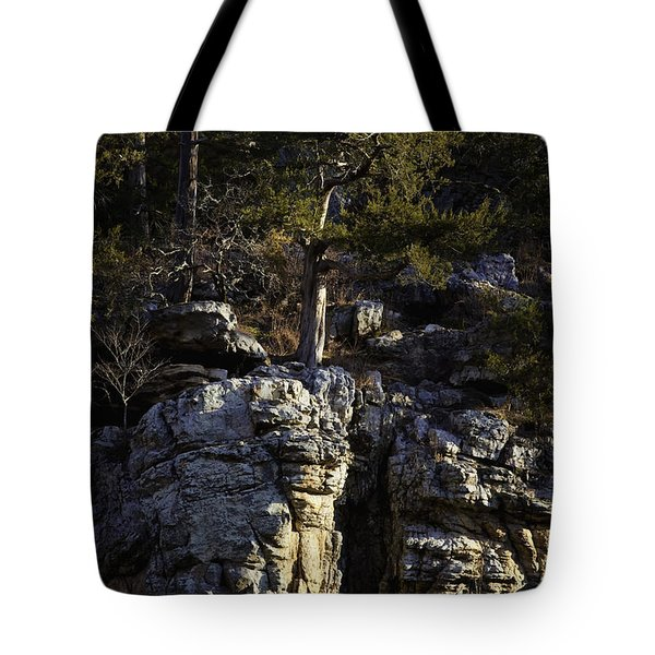Tote Bag featuring the photograph Old Cedar Buffalo National River by Michael Dougherty