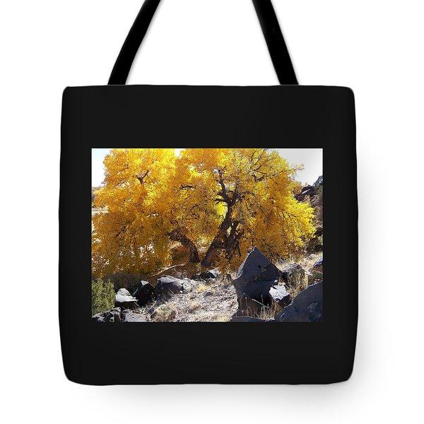 Old Cottonwood Below Black Rocks Tote Bag