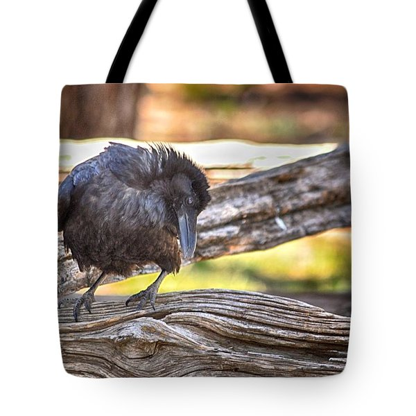 Old Crow Tote Bag