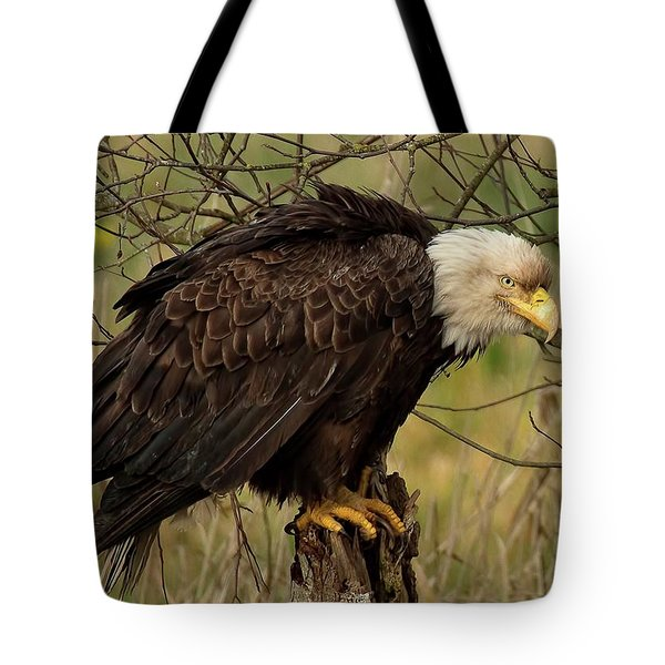 Old Eagle Tote Bag