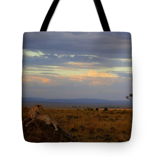 Old Earth Tote Bag