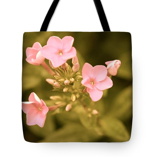 Tote Bag featuring the photograph Old Fashioned Spring by Corinne Rhode