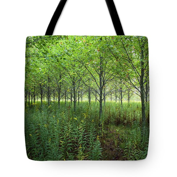 Tote Bag featuring the photograph Old Field Sentinels by Lon Dittrick