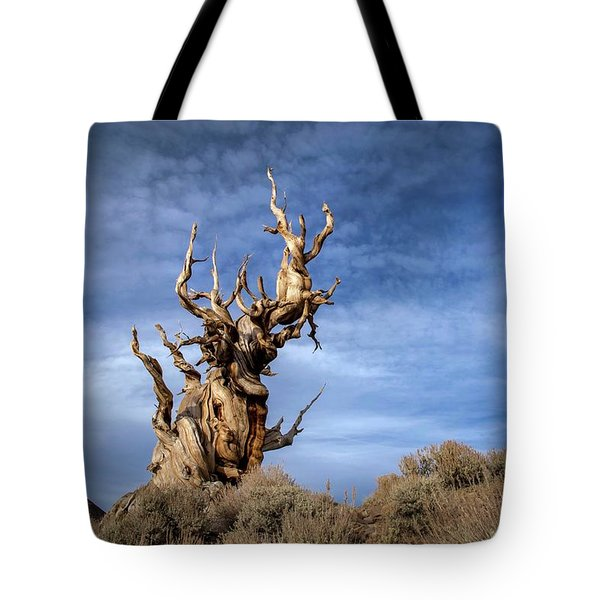 Tote Bag featuring the photograph Old Friend by Sean Foster