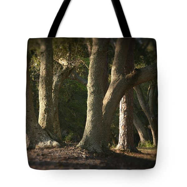 Tote Bag featuring the photograph Old Friends Meet In The Woods by Phil Mancuso