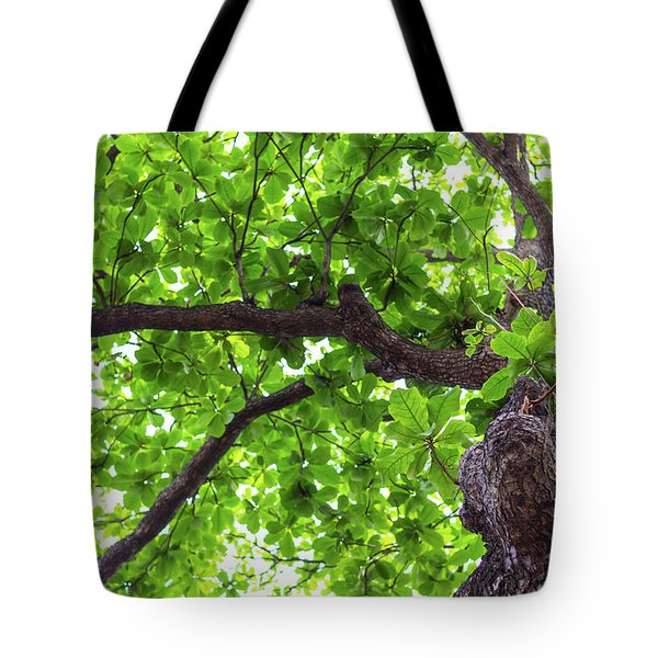 Tote Bag featuring the photograph Old Green Tree by Jingjits Photography