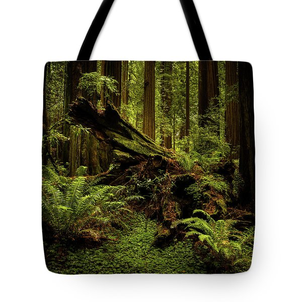 Old Growth Forest Tote Bag