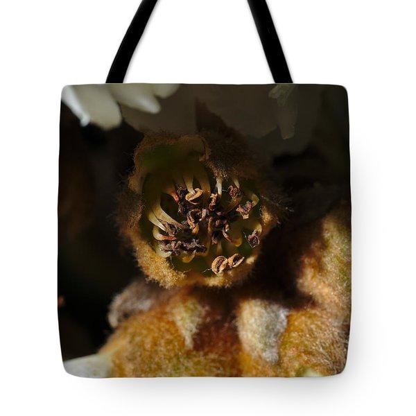 Old Loquat Tree Flower Tote Bag by Angelo DeVal