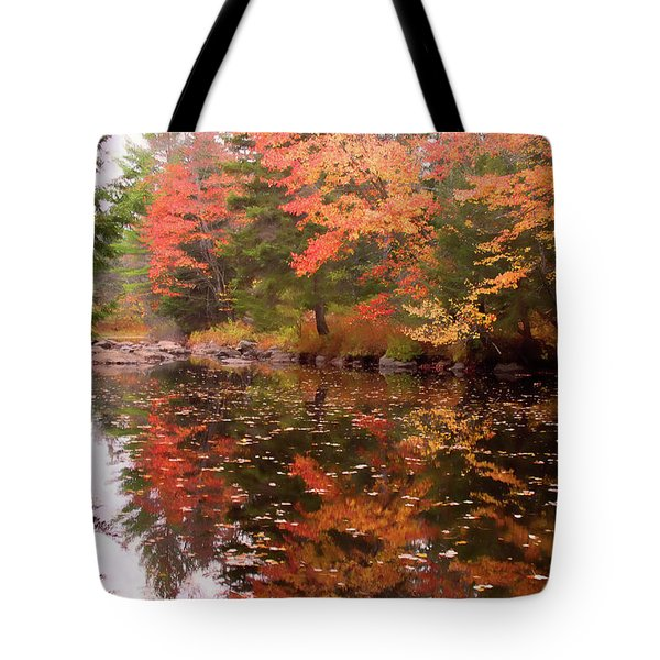 Tote Bag featuring the photograph Old Main Road Stream by Jeff Folger