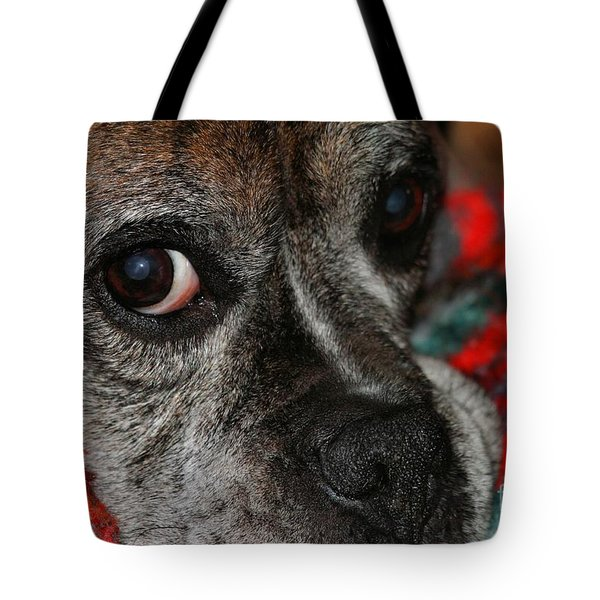 Tote Bag featuring the photograph Old Man Boxer by Debbie Stahre