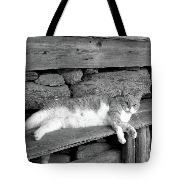 Tote Bag featuring the photograph Old Mill Cat by Sandi OReilly