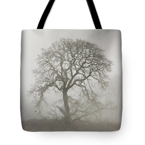 Tote Bag featuring the photograph Old Oak Tree And Fog by Angie Vogel