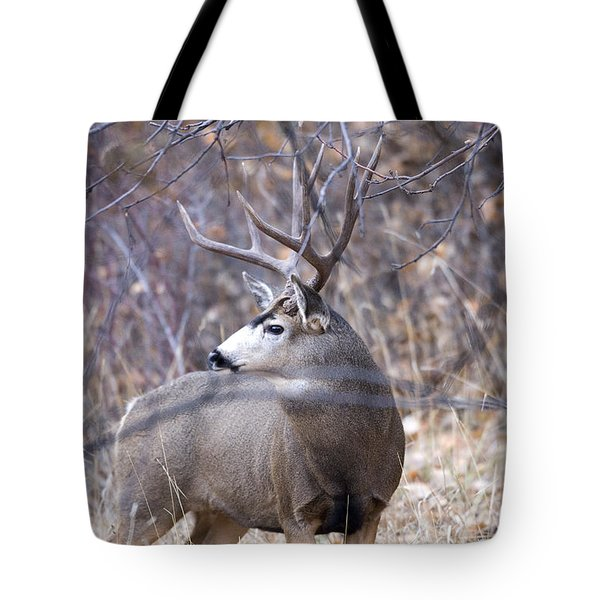 Old Orchard Tote Bag