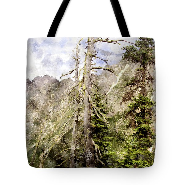 Old Pines Cascades Wc Tote Bag by Peter J Sucy