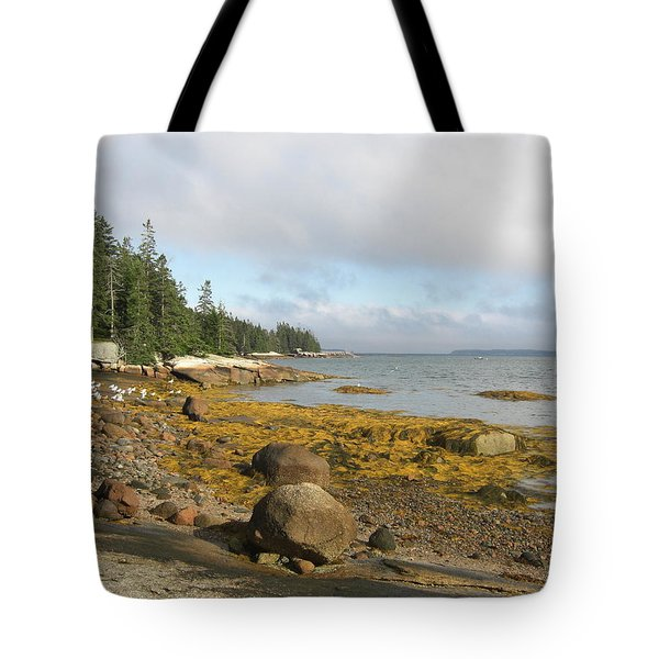 Old Quarry Beach, Stonington, Me Tote Bag