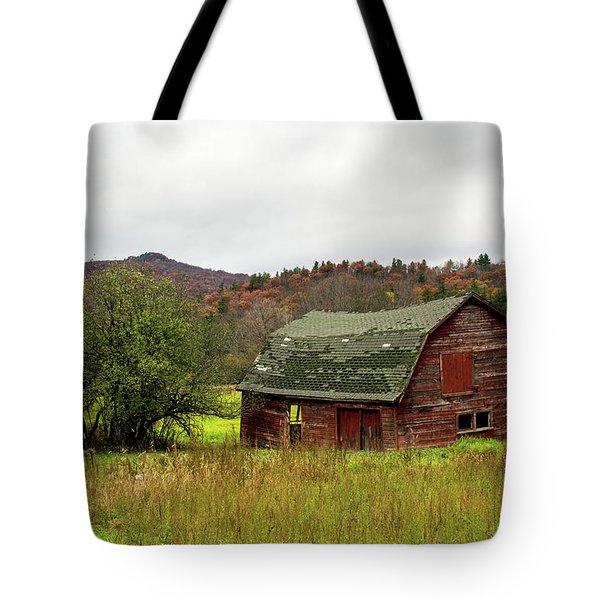 Old Red Adirondack Barn Tote Bag