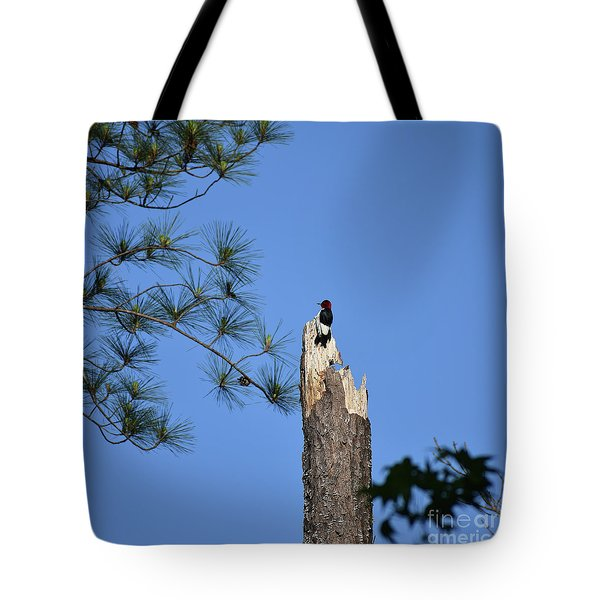 Tote Bag featuring the photograph Old Red by Skip Willits