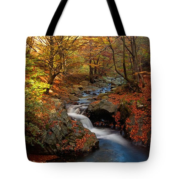 Old River Tote Bag