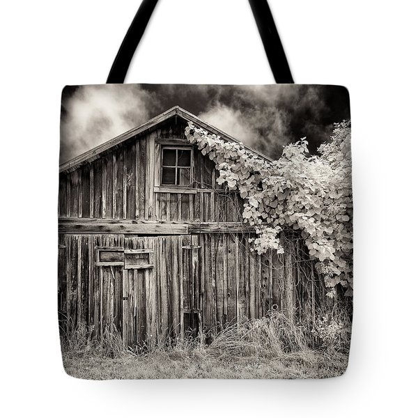 Old Shed In Sepia Tote Bag by Greg Nyquist