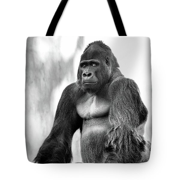 Old Soul Tote Bag by Kandy Hurley