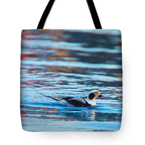 Old Squaw At Dawn Tote Bag