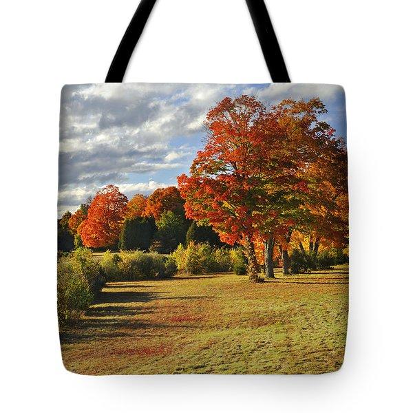 Old Stone Church Autumn Glow Tote Bag