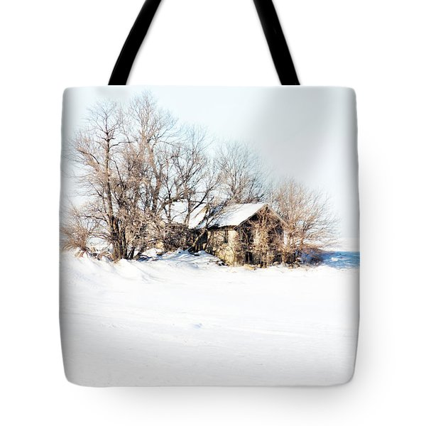 Tote Bag featuring the photograph Old  Stone House Milford by Julie Hamilton