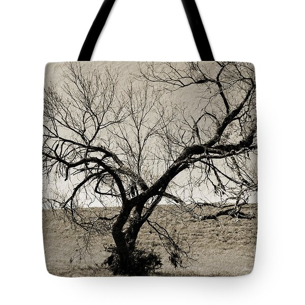 Old Texas Frontier  Tote Bag