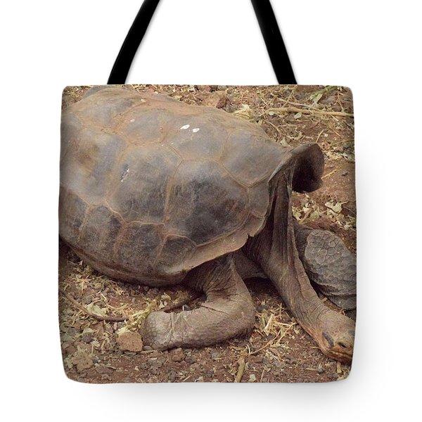 Old Tortoise Tote Bag