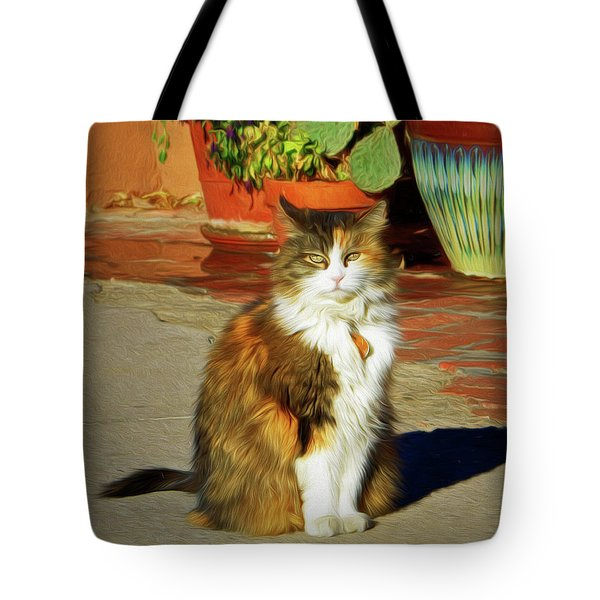 Tote Bag featuring the photograph Old Town Cat by Nikolyn McDonald