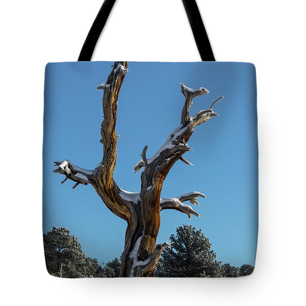 Old Tree - 9167 Tote Bag