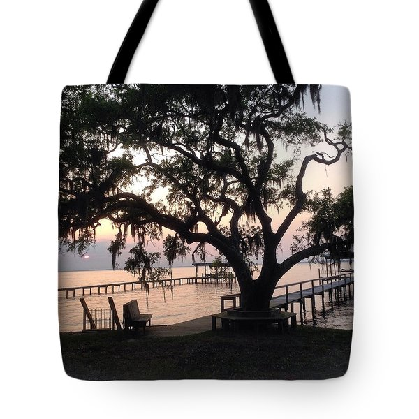 Old Tree At The Dock Tote Bag by Christin Brodie