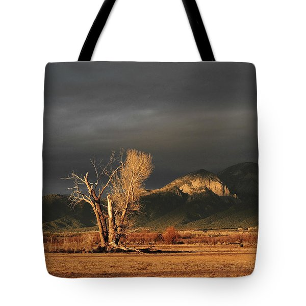Sunset On The Old Cottonwood Tote Bag
