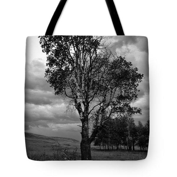 Old Tree, Lost Trail Wildlife Refuge Tote Bag