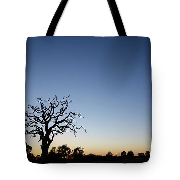 Old Tree Silhouette Tote Bag