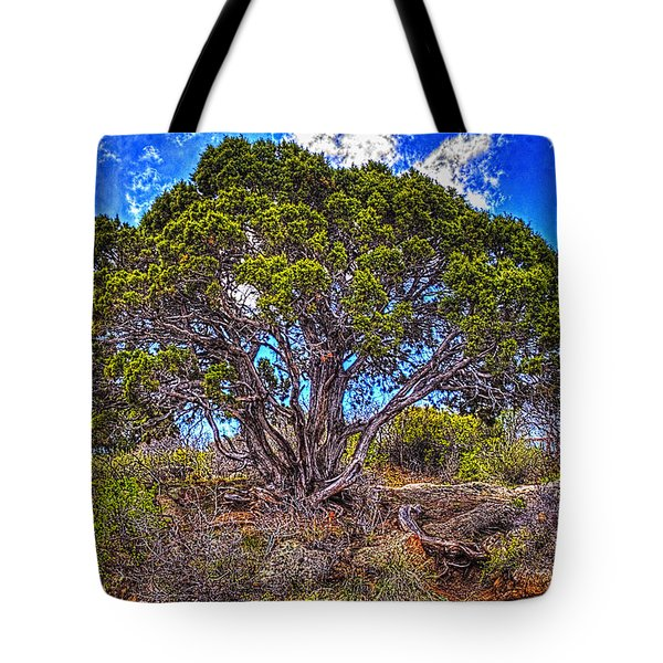 Old Utah Juniper Tote Bag
